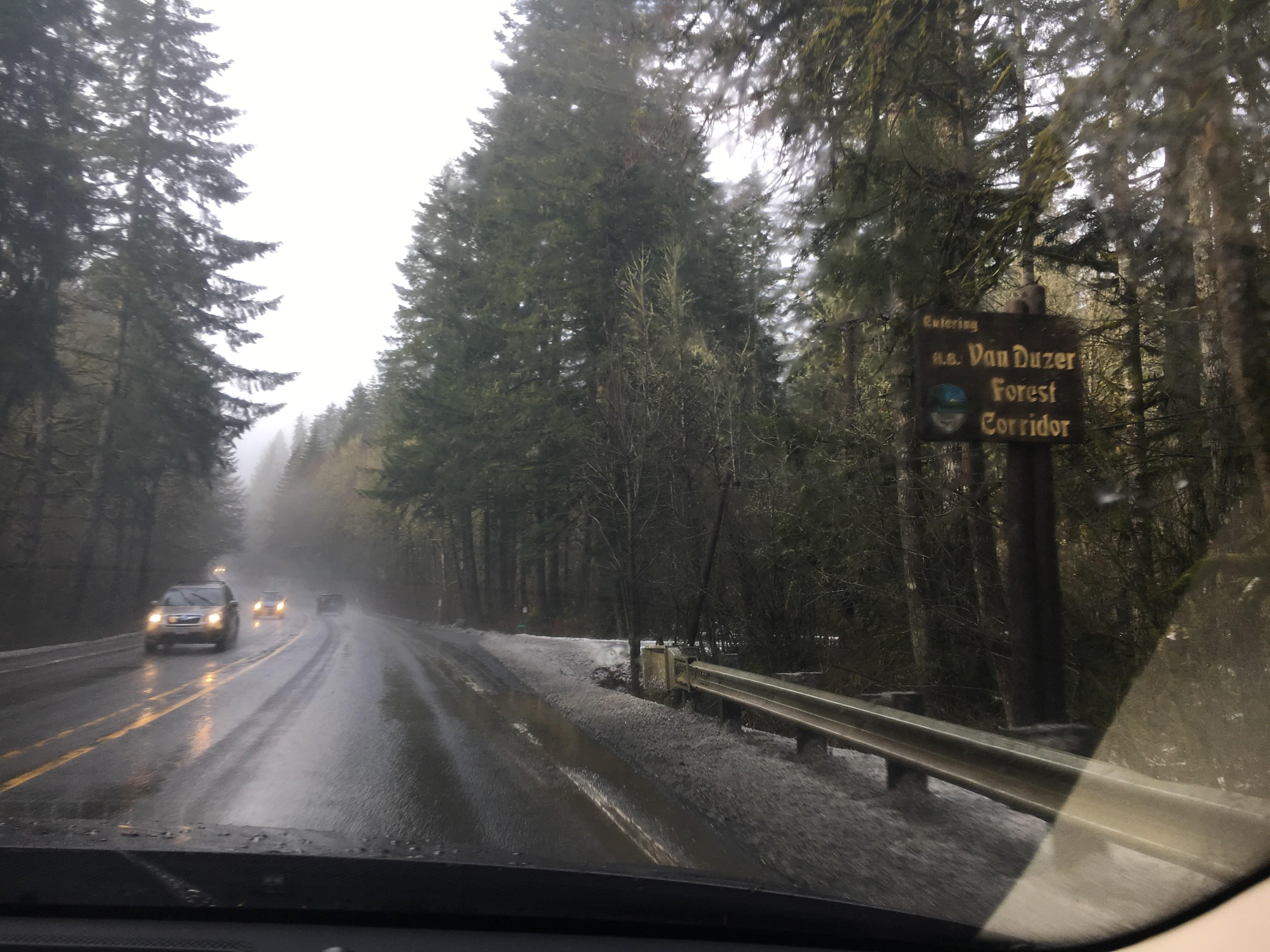 Van Duzer Forest Corridor, OR.